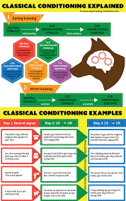 Example Of Classical Conditioning Classical Conditioning A Basic Form Of Learning
