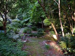 Small Picture 33 best woodland garden design ideas images on Pinterest