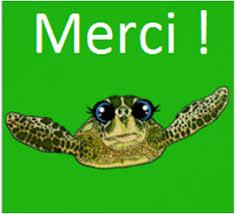 """Résultat de recherche d'images pour """"merci tortue"""""""