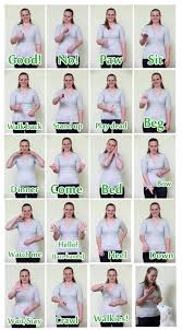Hand Signals Signing To Train Deaf Dogs Pet Parade