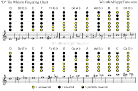 D Recorder Finger Chart Pin On Tin Whistle