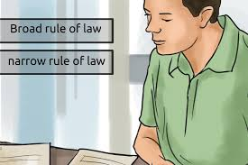 how to understand the ratio decidendi common law steps