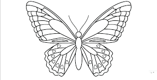 Printable Butterfly Outline Butterfly Templates To Print Card Templates Printable On