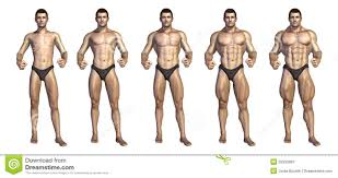 Bodybuilding Exercises Chart Free Download Bodybuilders Step By Step Transformation Stock Illustration