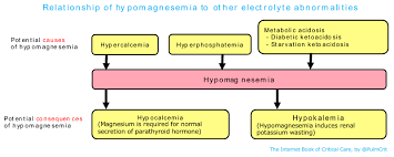 Electrolyte Relationships Chart Hypomagnesemia Emcrit Project