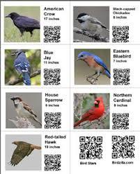 Education Bird Free Teachers Tools For