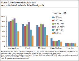Welfare Chart By Race 2015 Average Iq By Race Ethnicity And Career And Why It