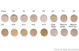 Makeup Foundation Color Chart Coconut Bay Cosmetics Ebay Stores