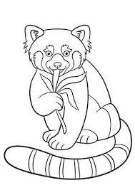 Kleurplaat Rode Panda Twee Kleine Schattige Rode Panda Glimlachen