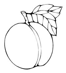 Coloriamo La Frutta Sottocopertanet