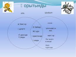 К к шыбын Уикипедия Шыбын туралы реферат