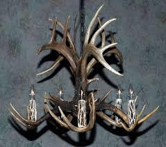 whitetail antler chandelier