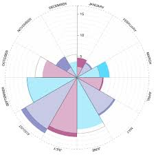 Peter Cook Radial Bar Chart Component For D3