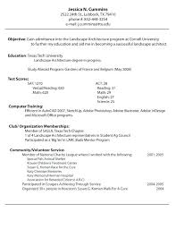 A Professional Resume Impressive Professional Looking Resume How To Make A Professional Looking