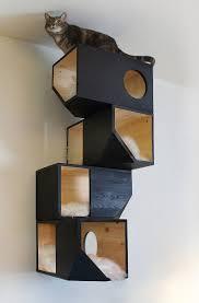 Modern Design Cat Furniture Cat Furniture Ideas Catissa Creates Modern Cat Beds And