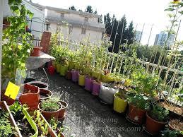 my balcony garden a diy balcony garden box