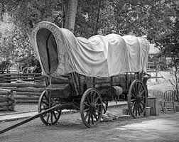 black and white covered wagon. frontier covered wagon at the fort edmonton museum in alberta either black \u0026 white and