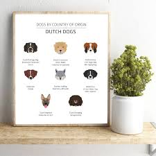 Kinds Of Dogs Chart Dutch Dog Breeds Education Poster Pet Shop Wall Art Canvas Prints Decor Holland Dogs Chart Art Painting Picture Dog Lovers Gift