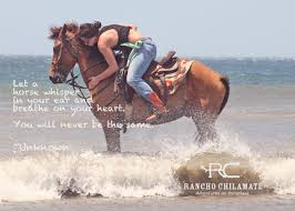 Cowgirl Quotes Cool Inspirational Horse Quotes From Rancho Chilamate Rancho Chilamate