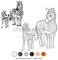 Small Picture Zebra Stock Images Royalty Free Images Vectors Shutterstock