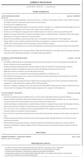 Audit Manager Resume Samples Audit Senior Manager Resume Sample Mintresume