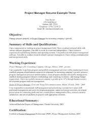 Great Resume Objectives Samples | Dadaji.us
