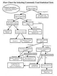 006 The Flow Chart Of Joint Classification Classifier Based