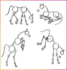 Choose a drawing to print it and draws on dotted lines to reveal magnificent drawings in which you can colour. Resimsayisi Amazing Animals Animal Background Iphone Animal Wallpaper Iphone Basic Animal Drawings Horse Drawing Tutorial Horse Drawing Animal Drawings