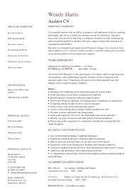 Sample Resume For Auditor Topshoppingnetwork Com