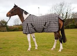 protack stable rug tartan