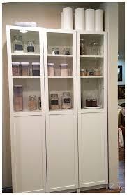 organized ikea pantry with doors