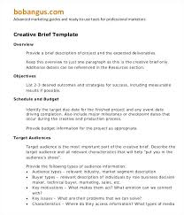 Policy Proposal Template Adorable Business Case Template Word Fake Credit Report Example Document
