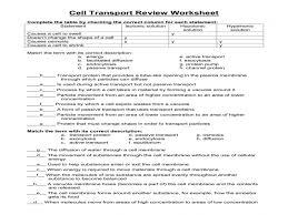 Cell Transport Worksheet - wiildcreative