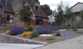 Drought Tolerant Front Yard Landscape Design Landscape Design Drought Tolerant Plants Drought Resistant