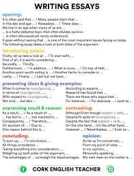 cork english teacher on essay writing language for  cancuc5w0aaaedt jpg