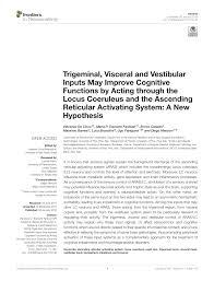 Iwaku Sleep Cycle Wake Up Light Pdf Trigeminal Visceral And Vestibular Inputs May Improve