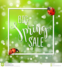 sale flyers spring sale banner with realistic ladybugs design template for