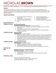 Awesome Design Ideas Web Developer Resume Template 16 Web Developer CV  Example For It ...