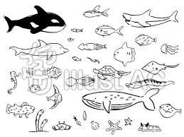 海の生き物01モノクロイラスト No 1380201無料イラストなら