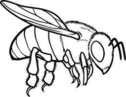 Small Picture Bee coloring pages flying ColoringStar
