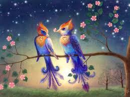 web 4914569 love birds wallpaper for free