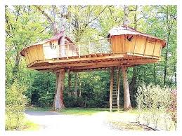 tree house plans for adults. Exellent Adults Free Treehouse Plans Inspiring Decorating Tree House Large Size  Treeless Intended Tree House Plans For Adults