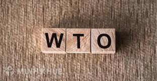 Bài học về thương mại và môi trường nhìn từ một vụ kiện trong WTO