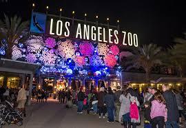 credit jamie pham credit jamie pham los angeles zoo lights