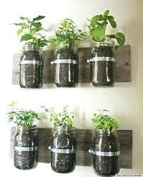 indoor herb garden kit. Indoor Herb Garden Kit Walmart With Mason Jars Canada