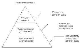 Информатика программирование Информационные системы и технологии  Персонал организации