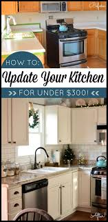 diy kitchens on a budget. best 25+ diy kitchens ideas on pinterest | kitchen renovation diy, and cheap remodel a budget