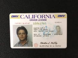 Dw The Back - amp; Kitchen Home Future Prop Drivers License Mcfly com To Novelty Memorabilia Marty Amazon