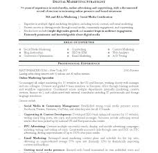 Marketing Resume Template template Digital Marketing Resume Template 58