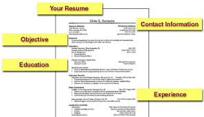 perfect job resume